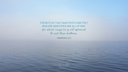For both he that sanctifieth and they who are sanctified are all of one: for which cause he is not ashamed to call them brethren, - Hebrews 2:11